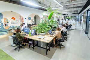 không gian văn phòng xanh Mxara